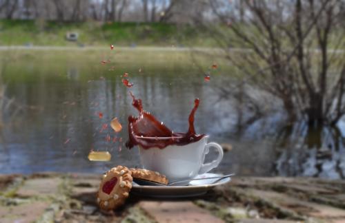 утром у пруда...