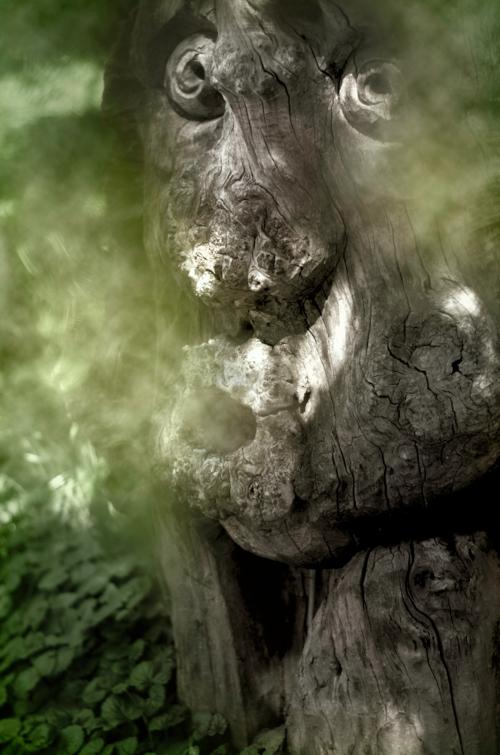Дух леса!