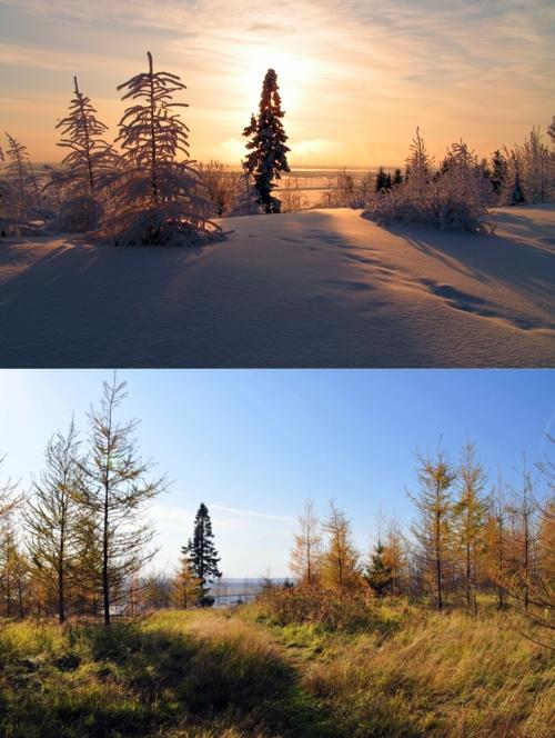 Зима и осень