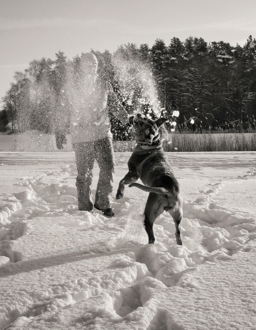 Схватка со снегом