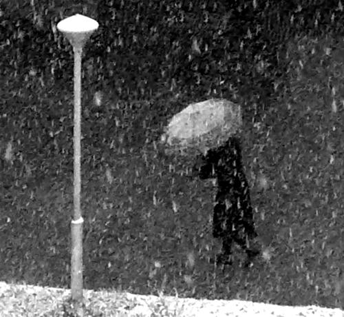 Зонт, фонарь, метель.