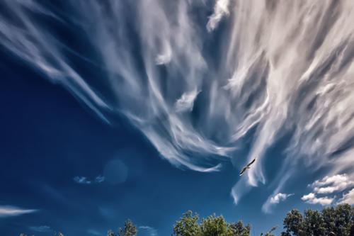 Обнимая небо...