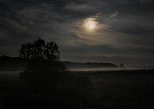 Ночь полнолуния