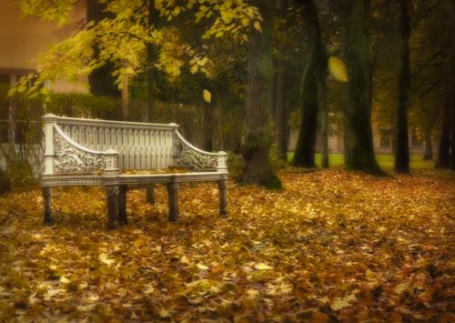 Села осень на скамейку