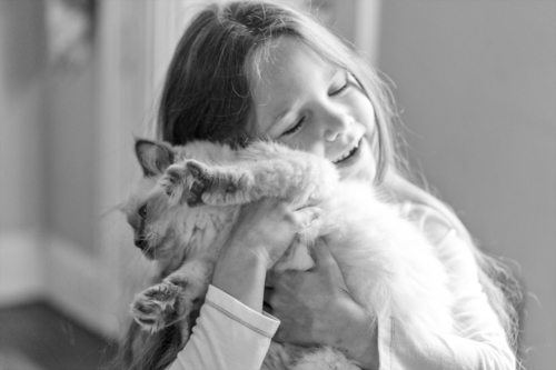 каждому котёнку нужна девочка