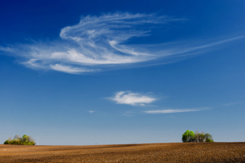 Пролетая над полями