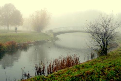 Туманный день