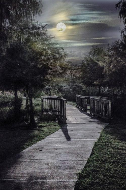 Лунное волшебство